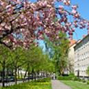 Wohnbau Schwerin Vaasaer Straße 1-6
